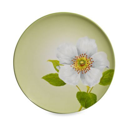 noritake colorwave apple 825inch floral accent plate - Noritake Colorwave