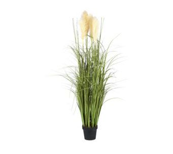 Outdoor Led Illuminated Faux Pampas Grass Qvc Uk Pampas Grass