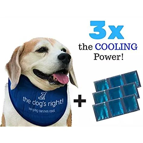 The Dog S Right Cooling Collar For Dogs Bandana With 3 Ice Packs