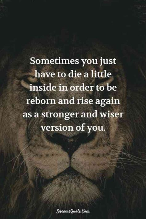 """""""Sometimes you have to die a little inside in order to be reborn and rise again as a stronger and wiser version of you."""" — Unknown #grief #lifequotes #quotes #griefquotes #stagesofgrief #loss #death Follow us on Pinterest: www.pinterest.com/yourtango"""