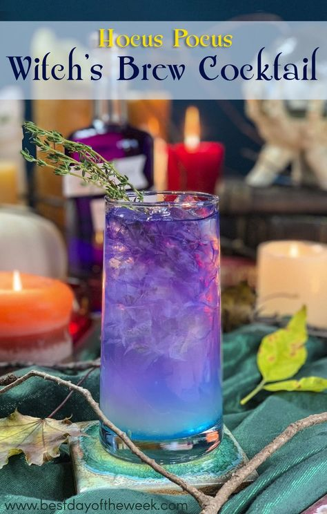Thos bright purple drink is the perfect cocktail for your Halloween party party cocktails Hocus Pocus Witch's Brew Cocktail Halloween Desserts, Hallowen Food, Halloween Party Drinks, Halloween Treats, Halloween Cupcakes, Haloween Drinks, Halloween Table, Halloween Movies, Halloween Signs