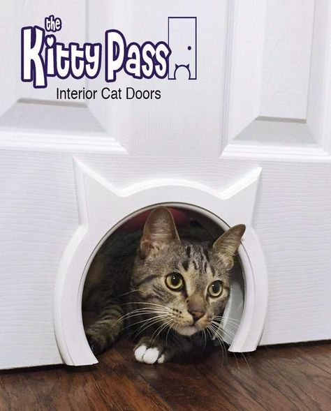 The Kitty Pass Interior Cat Door Hidden Litter Box Pet Door for cats up to 21 lbs Details can be found by clicking on the image. (This is an affiliate link) Cool Cats, Hidden Litter Boxes, Gatos Cool, Animal Gato, Dog Area, Pet Door, Photo Chat, Unique Cats, Unusual Pets