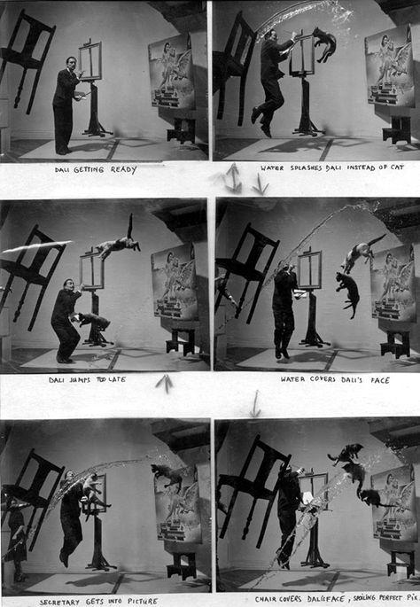 Salvador Dali & Cats