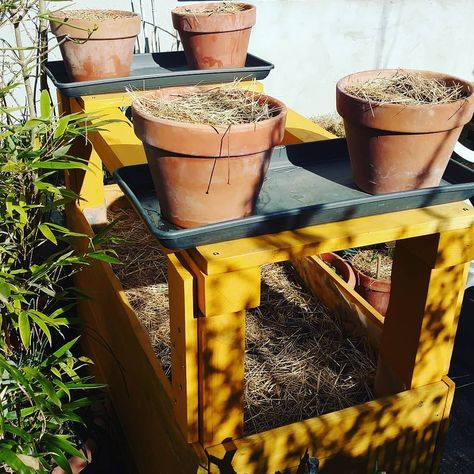 Trop Content De Ma Jardiniere Custom Potagerbalcon
