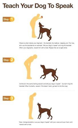 Koehler Method Of Dog Training Surefire Dog Training