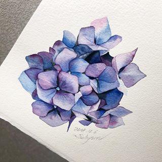 Pin By Pisău Paula On Art Flower Drawing Watercolor Hydrangea Flower Painting