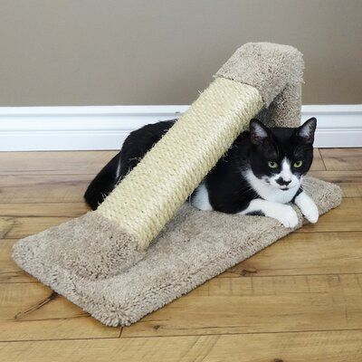 New Cat Condos 12 Premier Tilted Scratching Post Color Gray Best Cat Scratching Post Cat Scratching Post Scratching Post