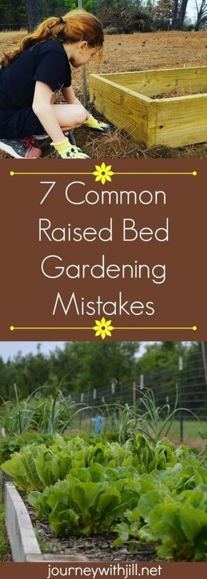 7 Common Raised Bed Gardening Mistakes #raisedgardening