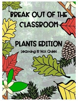 Types Of Plants Photosynthesis And Producers Break Out Of The Classroom How To Memorize Things Photosynthesis Classroom