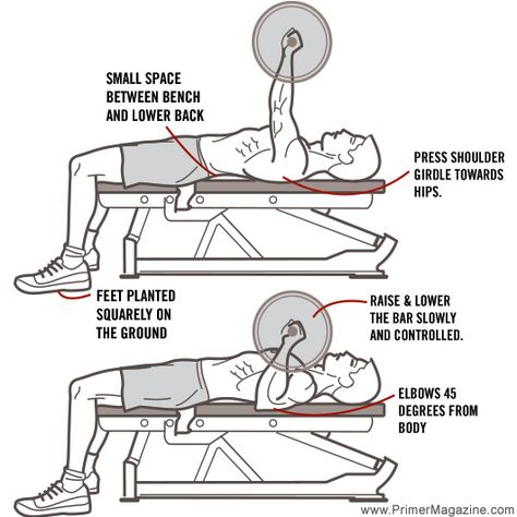 Image result for bench press form diagram