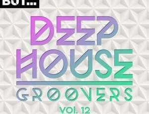 Va Nothing But Deep House Groovers Vol 12 Zip Album Download Fakazamusics Com African Music Videos Music Videos African Music