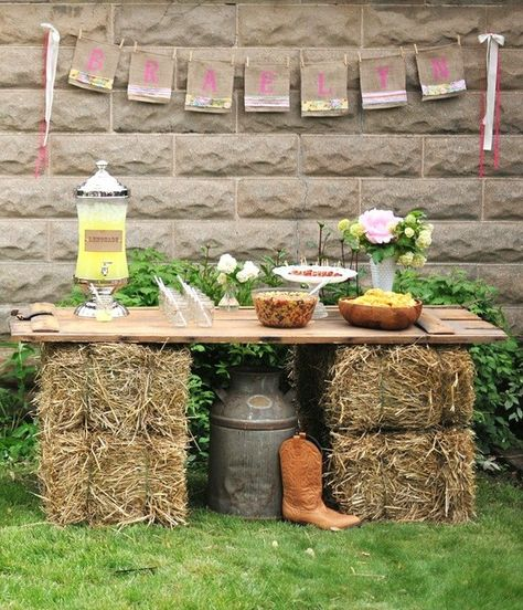 Serve food on hay bales  wooden boards for outdoor cocktail party or child's birthday