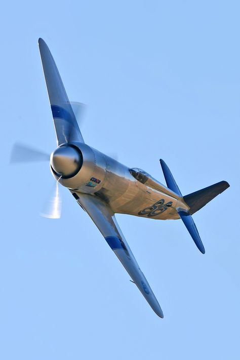 Yak-11 trainer 1945