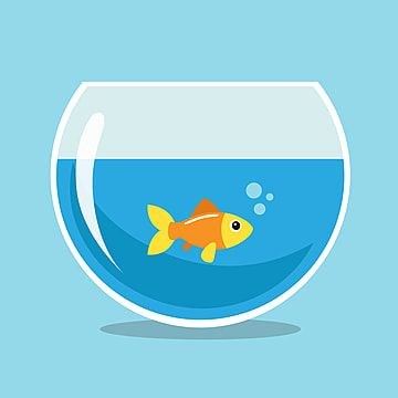 Golden Fish Swimming In A Fishbowl Fish Bowl Clipart Fish Bowl Goldfish Png And Vector With Transparent Background For Free Download Golden Fish Background Patterns Free Vector Graphics