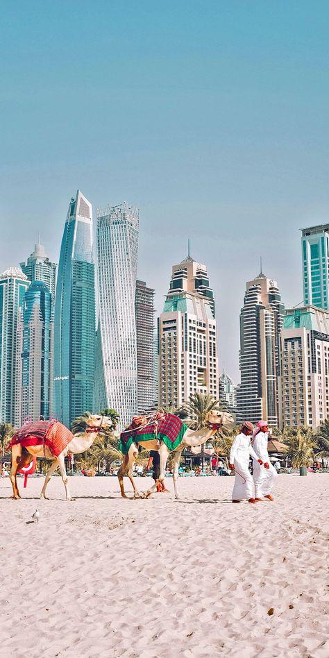 Cruises to Dubai, United Arab Emirates Dubai Vacation, Dubai Travel, Dream Vacations, Dubai City, Places To Travel, Travel Destinations, Places To Visit, Places Around The World, Around The Worlds