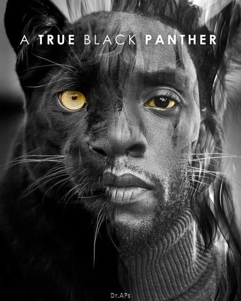 R.I.P. our Black Panther