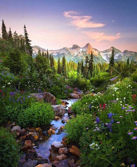 Awesome wonderland trail mount rainier on this favorite site