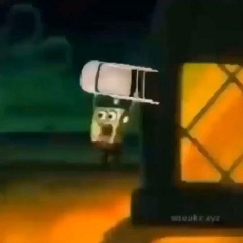 sponge go crazy🙉