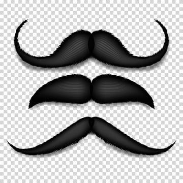 Moustache Creative Hair Png Transparent Clipart Image And Psd File For Free Download Beard Vector Hair Png Photoshop For Photographers