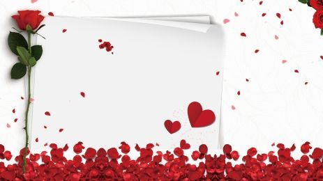 Closeup Of Red Rose Petals Valentines Day Background Red Roses