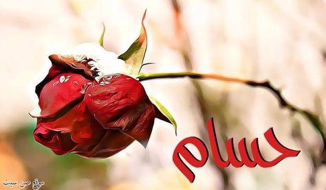 اسم حسام في صورة Flowers Sunset Plants