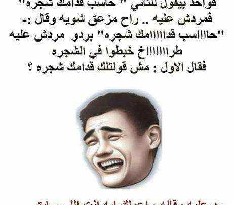 نكت محششين مصرية جديدة تموت من الضحك Historical Figures Historical