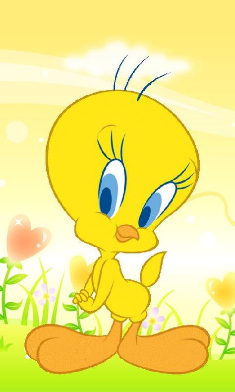 Free Tweety Wallpapers Android Apps APK Download For Android GetJar