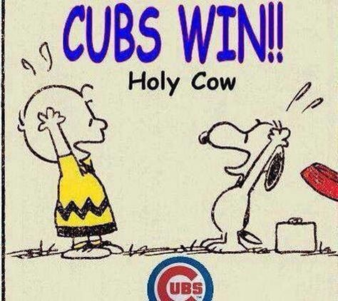 Holy Cow, Cubs Win!!! 9/28/15 ❤️