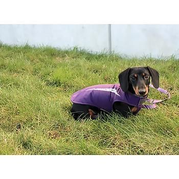 Cascade Dog Coat Plum Purple Keep Your Pooch Warm And Dry With