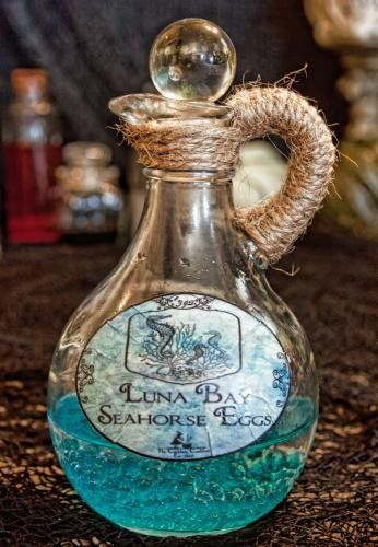 Magic Potion, Harry Potter, Hocus Pocus, Halloween, Witchs Potions and Apothecary Jars; Halloween Potion Bottles, Theme Halloween, Halloween Potions, Halloween Forum, Spooky Halloween Decorations, Halloween Labels, Dollar Store Halloween, Holidays Halloween, Halloween Crafts