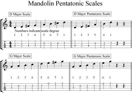 Mandolin Chord Chart For Mando Lesson G D A E Ebay Mandolin