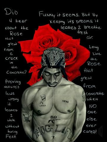 The Rose That Grew From Concrete Tupac Pictures Tupac Wallpaper