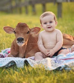 Beautiful Baby Images Sweet Baby Images Download Very Cute Baby Images Baby Images Hd Very Cute Baby Images Hd Cute Baby Imag Animals Baby Animals Cute Animals