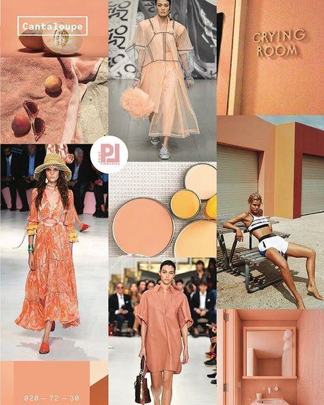 Cantaloupe 2020 Trend Board Cantaloupe Coloro x WGSN 2020 Top 5 Key Colours
