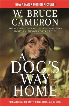 Picture From The Movie A Dog S Way Home