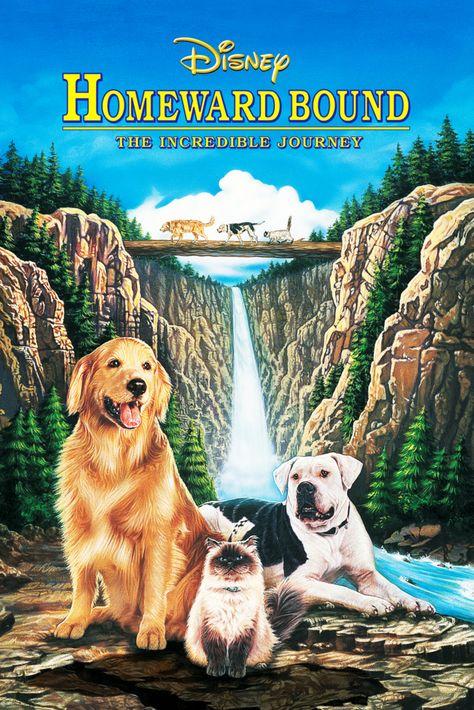 Homeward Bound: The Incredible Journey Movie Poster - Robert Hays, Kim Greist, Veronica Lauren  #HomewardBound, #TheIncredibleJourney, #MoviePoster, #DuWayneDunham, #KidsFamily, #KimGreist, #RobertHays, #VeronicaLauren
