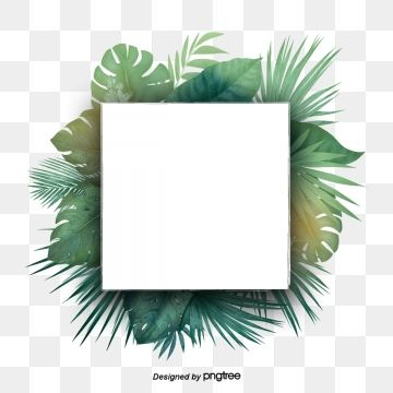 Green Tropical Plant Palm Leaf Border Border Clipart Palm Leaf Botany Png Transparent Clipart Image And Psd File For Free Download Flower Clipart Tropical Frames Leaf Clipart