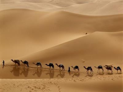 Дубай пустыня квартиры в оаэ с детьми