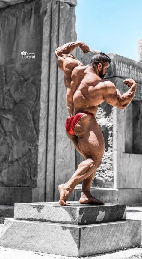 Pin By David Ford On Haddi In 2019 Bodybuilding Olympia Fitness