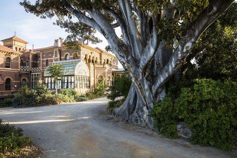 Rippon Lea Estate | National Trust Victoria