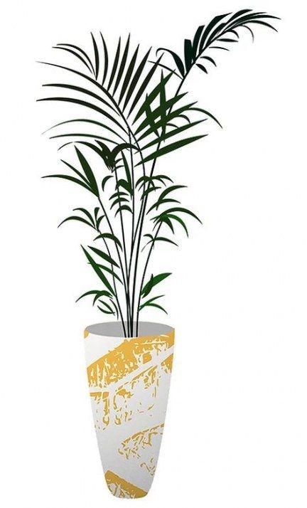 Best Plants Png Indoor 51 Ideas Plants Plant Aesthetic Plants