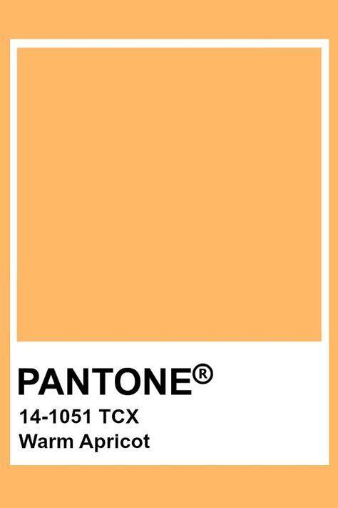 Pantone Warm Apricot