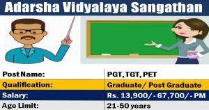 Avs Recruitment 878 Pgt Tgt Pet Posts 22 March 2019 Job