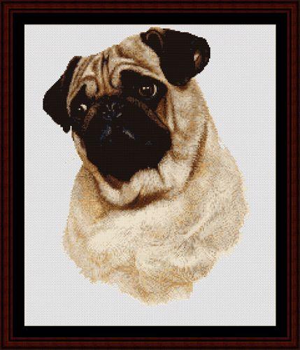 Pug - Cross Stitch Collectibles fine art counted cross stitch pattern