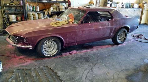 Color Sand And Buff 1969 Ford Mustang Restoration Part 64 Chinto S Auto Ford Mustang Mustang Restoration Mustang