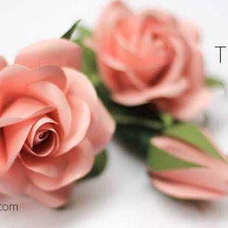 Cardstock Rose Tutorial Paper Flower Tutorial Paper Flowers Diy