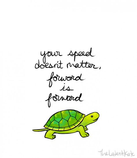 """Turtle with """"your speed doesn't matter, forward is forward"""""""