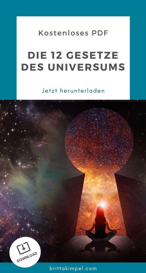 Bestellung beim universum pdf