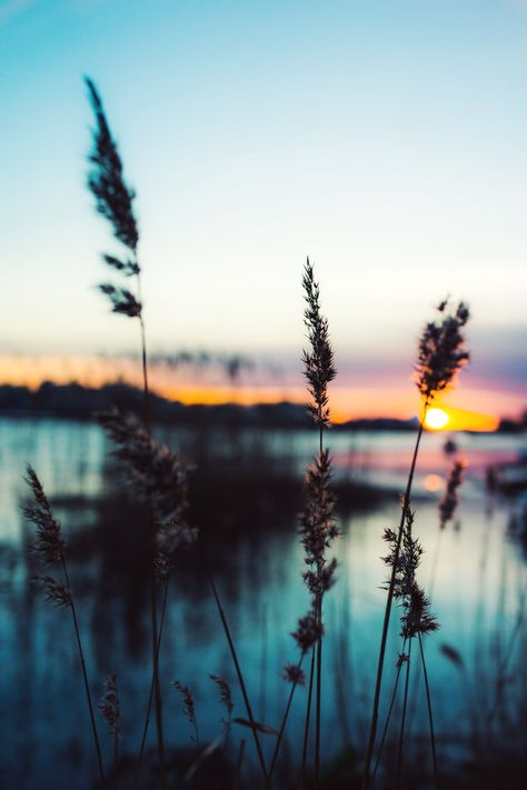 #Sunlight #Lake                                                                                                                                                      Plus