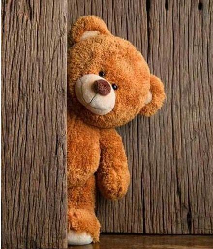 Pin By Satya On Teddy Bear Teddy Bear Wallpaper Teddy Bear Images Tatty Teddy